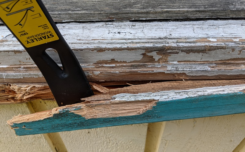 prying rotted wood from window frame