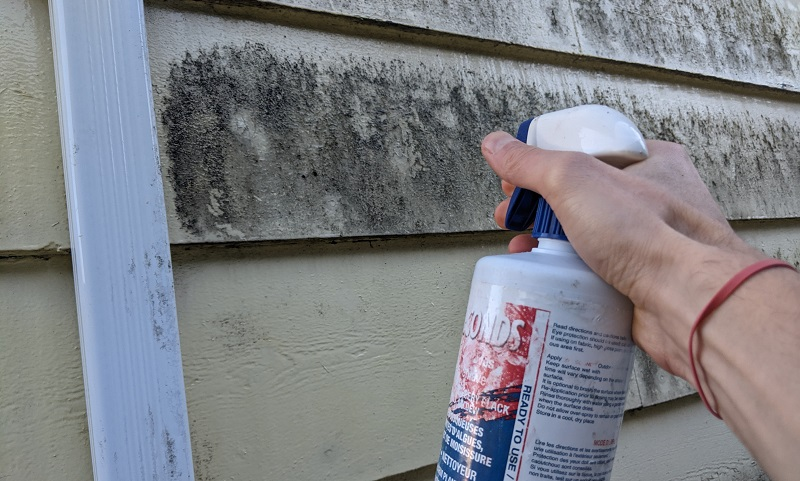 spraying down house exterior with 30 seconds cleaner