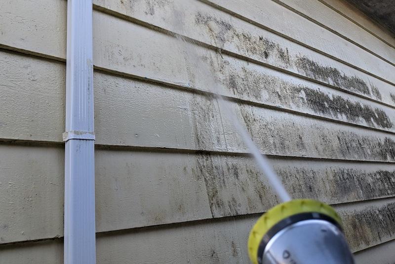 washing away mildew with garden hose